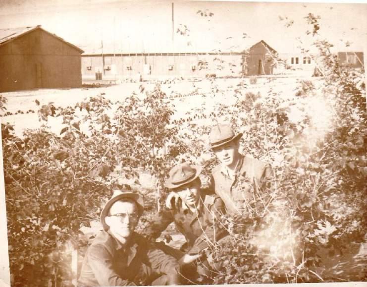 10_Груба В. І. (на фото – перший з права) з друзями біля посаджених дерев
